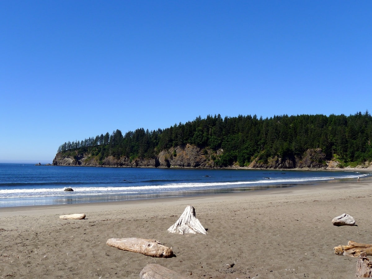 Pacific Beach in Washington State