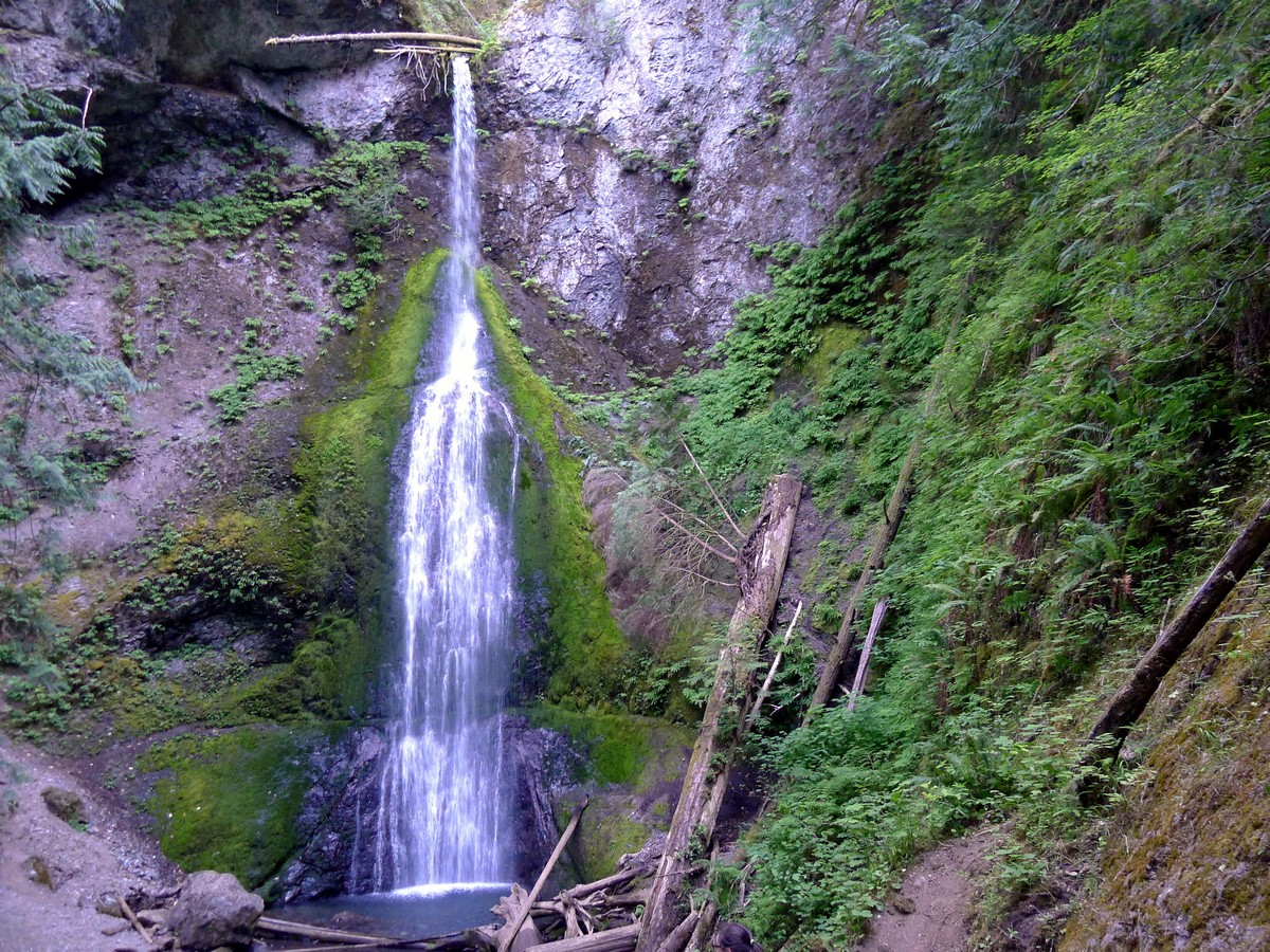 Marymere Falls trail in Olympic National Park, Washington is a beautiful way to spend a day with family