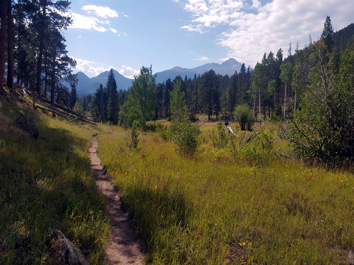 End of the Beaver Meadows Loop Hike in Rocky Mountain National Park, Colorado