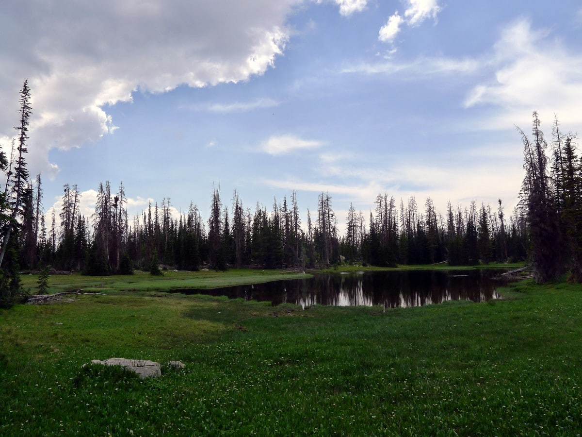 Small tarn on the Notch Lake hike in the Uinta Mountains, Utah