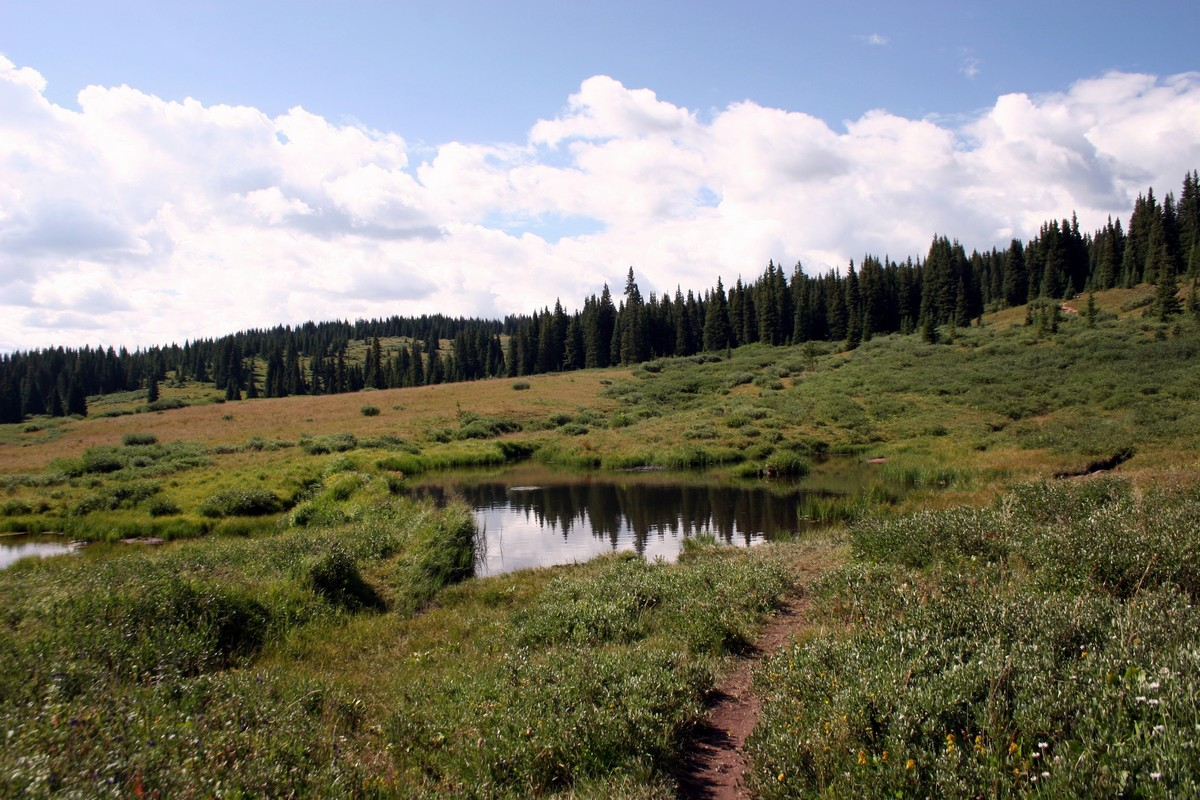 View of the large pond on the Shrine Ridge Trail Hike near Vail, Colorado
