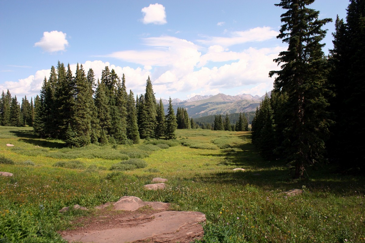 View to the right of the Shrine Ridge Trail Hike near Vail, Colorado