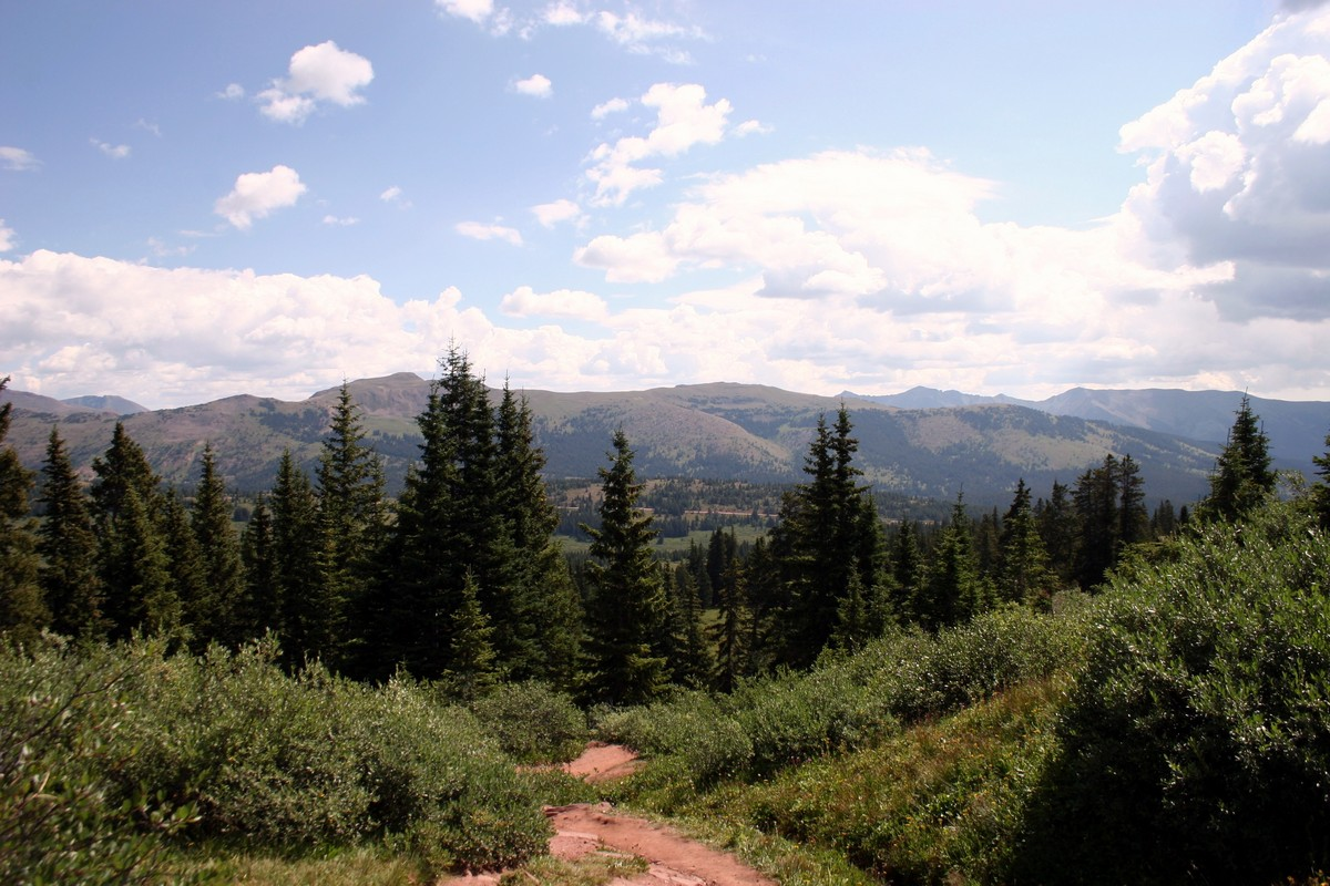 View before reaching the ridge of the Shrine Ridge Trail Hike near Vail, Colorado