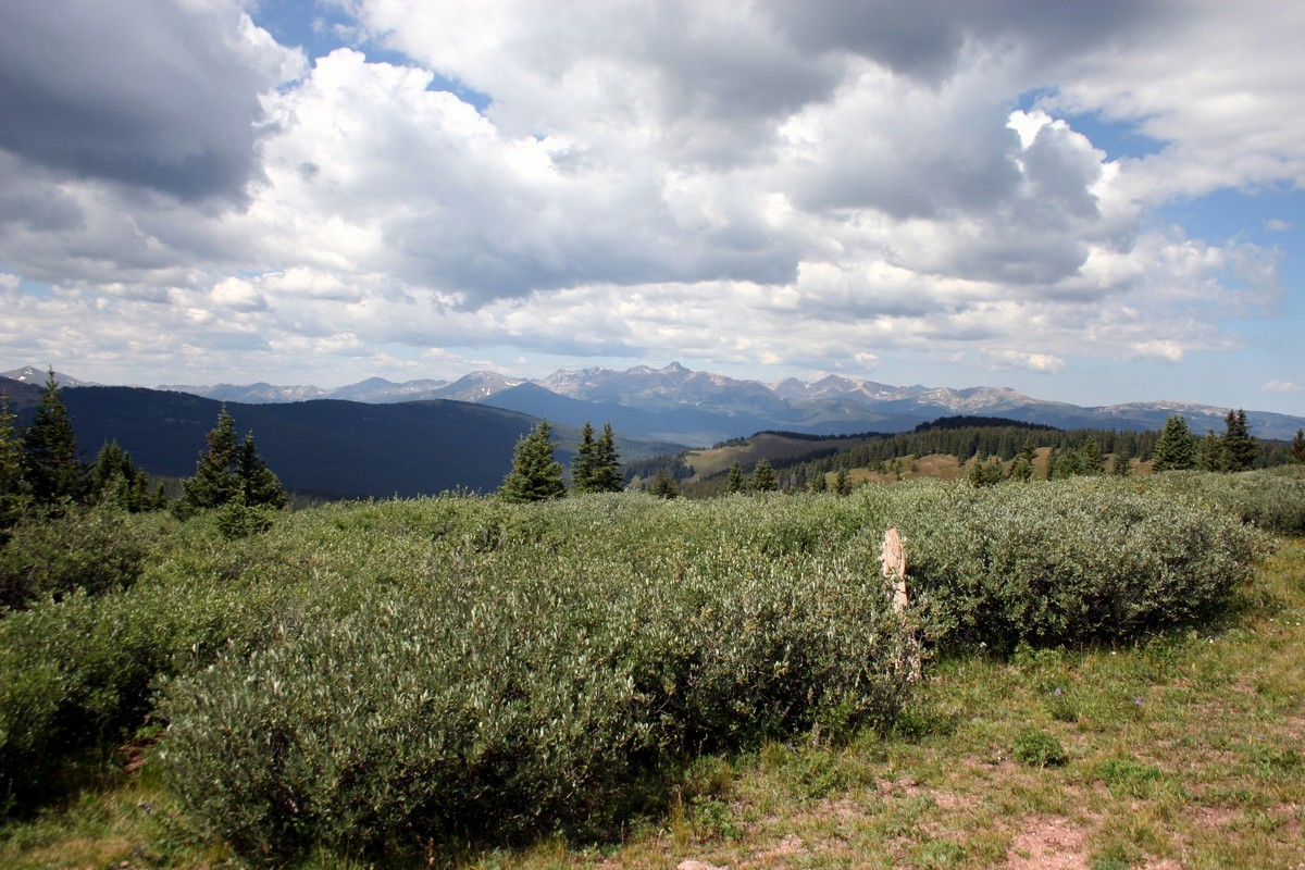 View looking west of the Shrine Ridge Trail Hike near Vail, Colorado