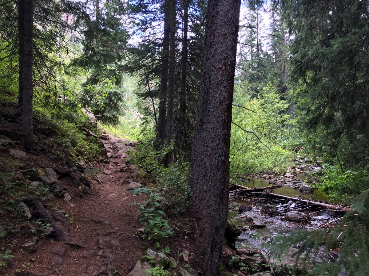 Next to the creek on the Gore Lake Trail Hike near Vail, Colorado