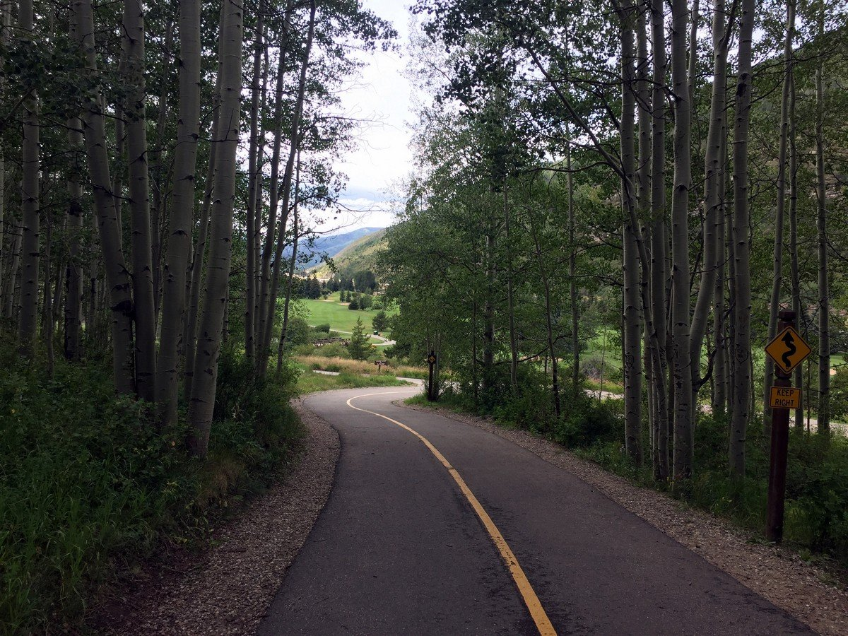 Path through aspens on the Gore Valley Trail (East Vail) Hike near Vail, Colorado