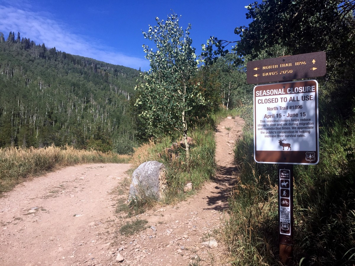 The beginning of the trail of the Davos Trail Hike near Vail, Colorado