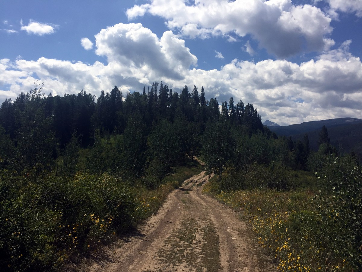 Last part of the trail of the Davos Trail Hike near Vail, Colorado