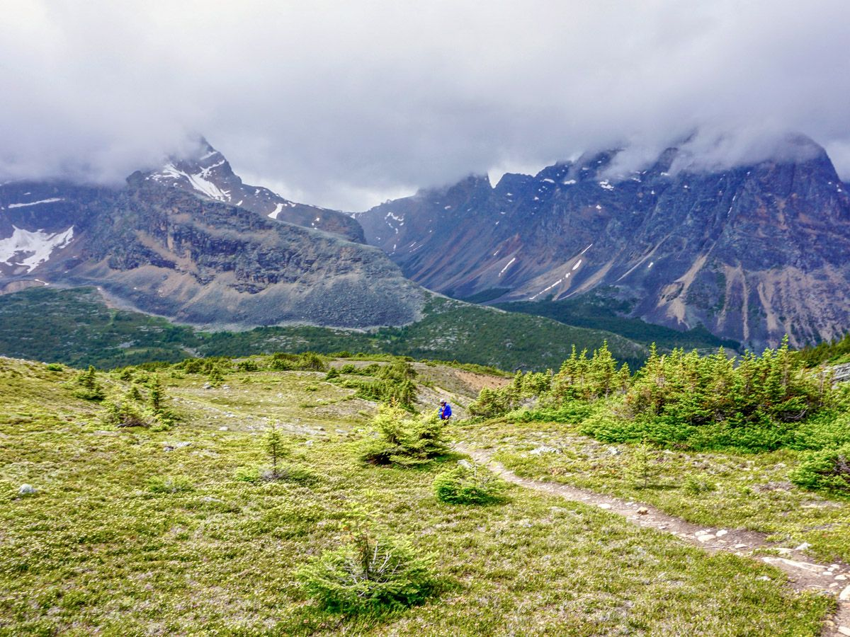 Hikers on a trail of the Verdant Pass Hike in Jasper National Park, Alberta
