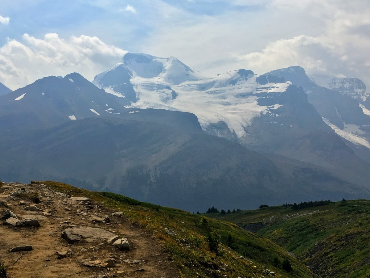 View of Mt Athabasca from the Wilcox Pass Hike from the Icefields Parkway near Banff National Park