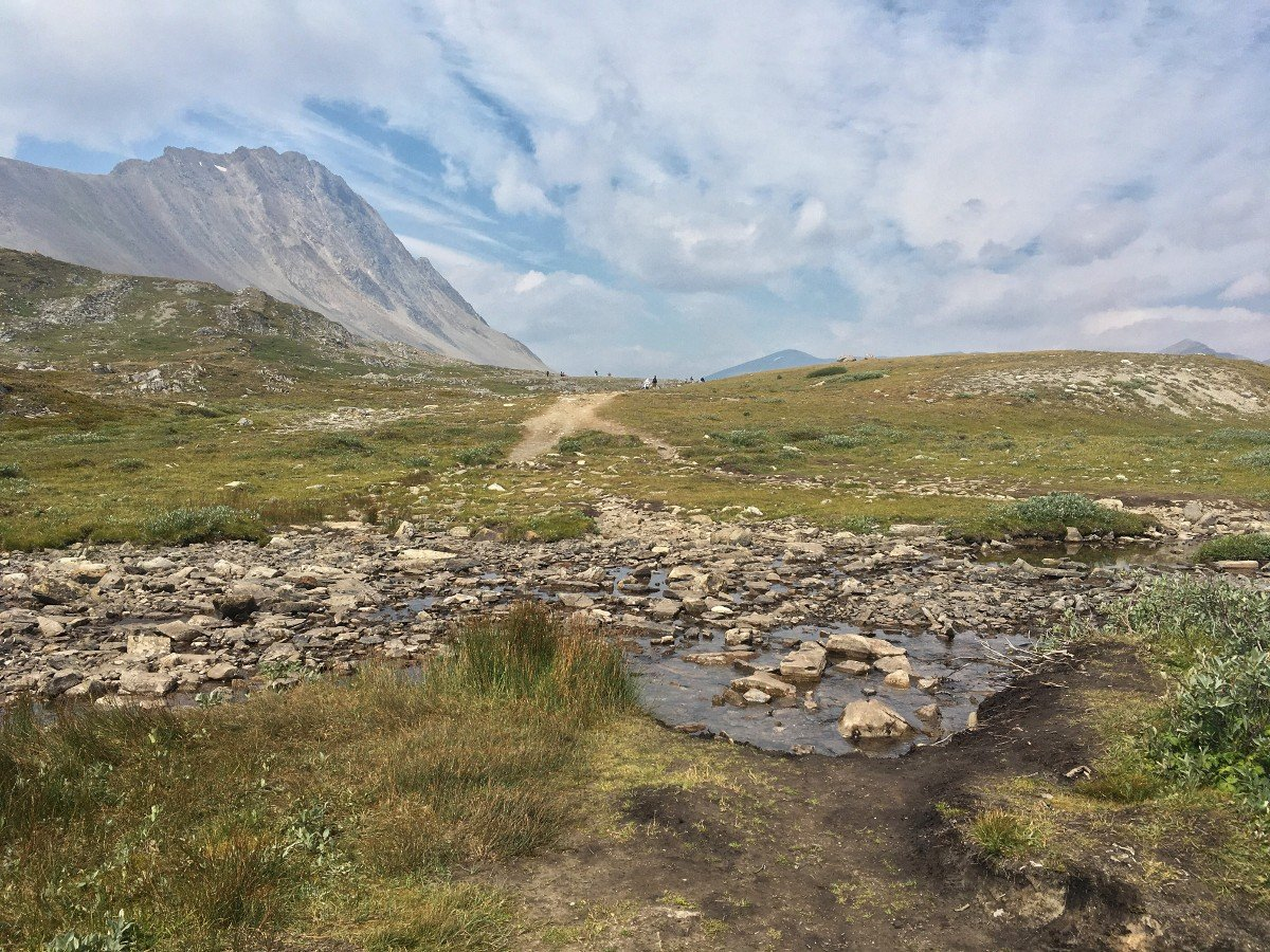 Creek crossing near the summit of pass on the Wilcox Pass Hike from the Icefields Parkway near Banff National Park