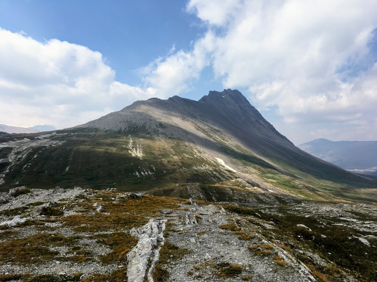 Limestone ridges leading to Wilcox Peak on the Wilcox Pass Hike from the Icefields Parkway near Banff National Park