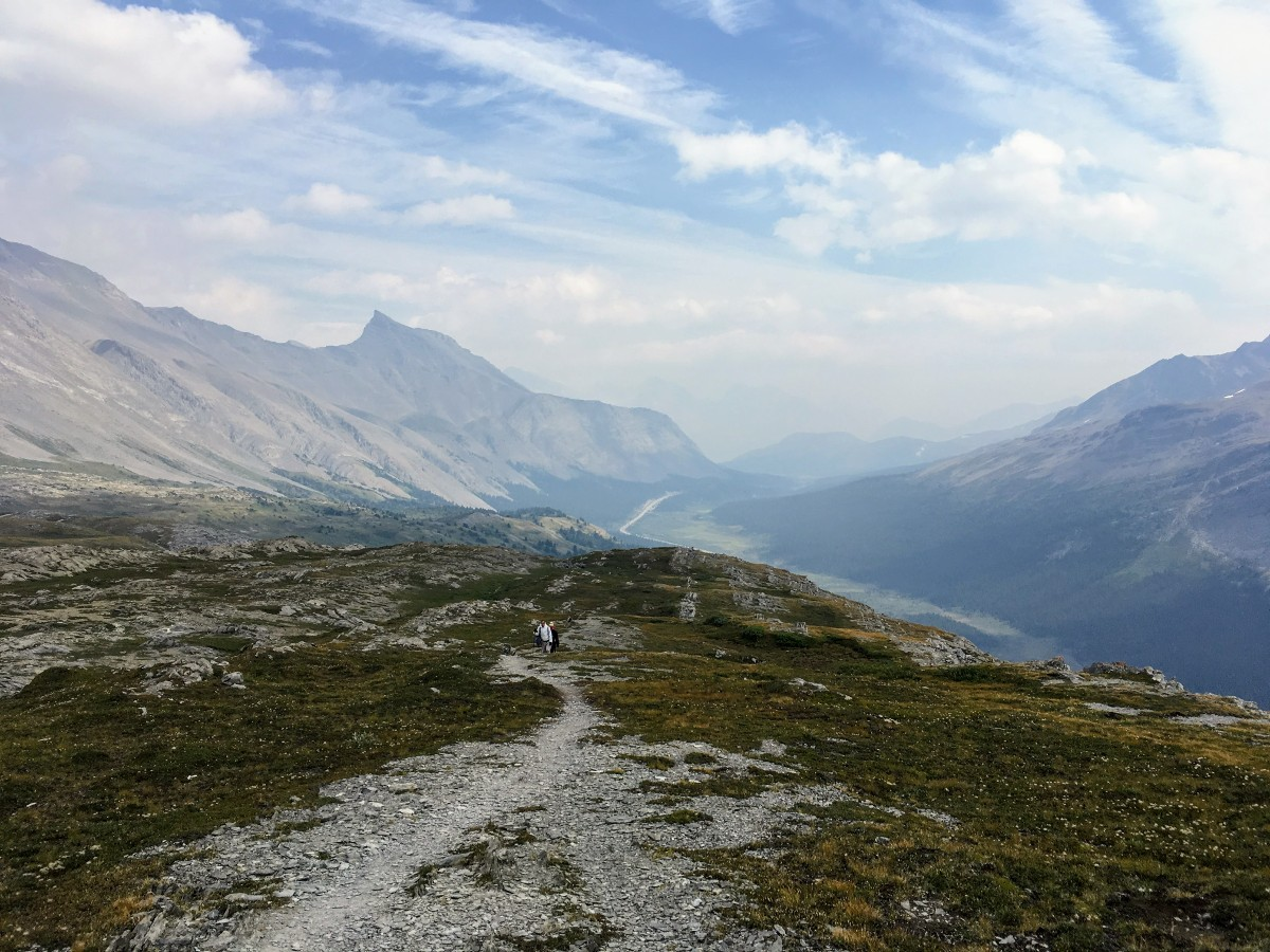 View south along Icefields Parkway from Wilcox Ridge on the Wilcox Pass Hike from the Icefields Parkway near Banff National Park