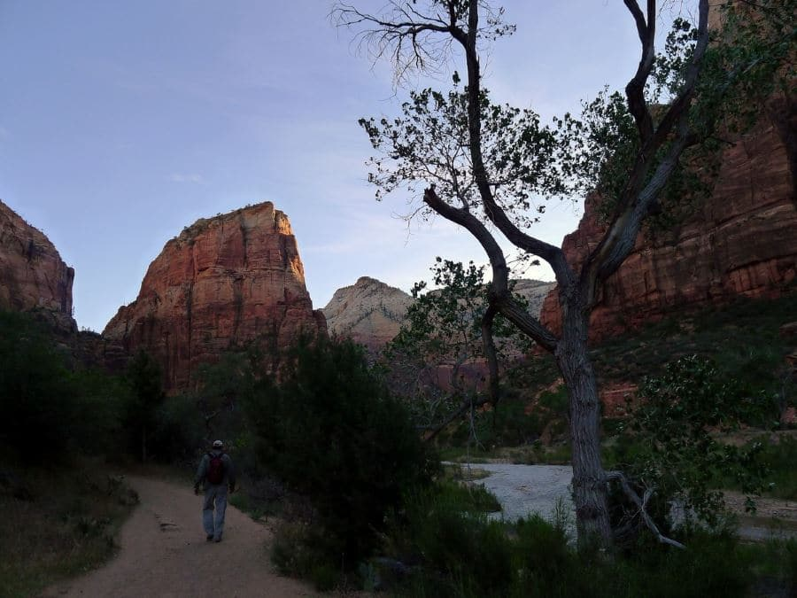 Angel's Landing trail must be included in planning your trip to Zion National Park