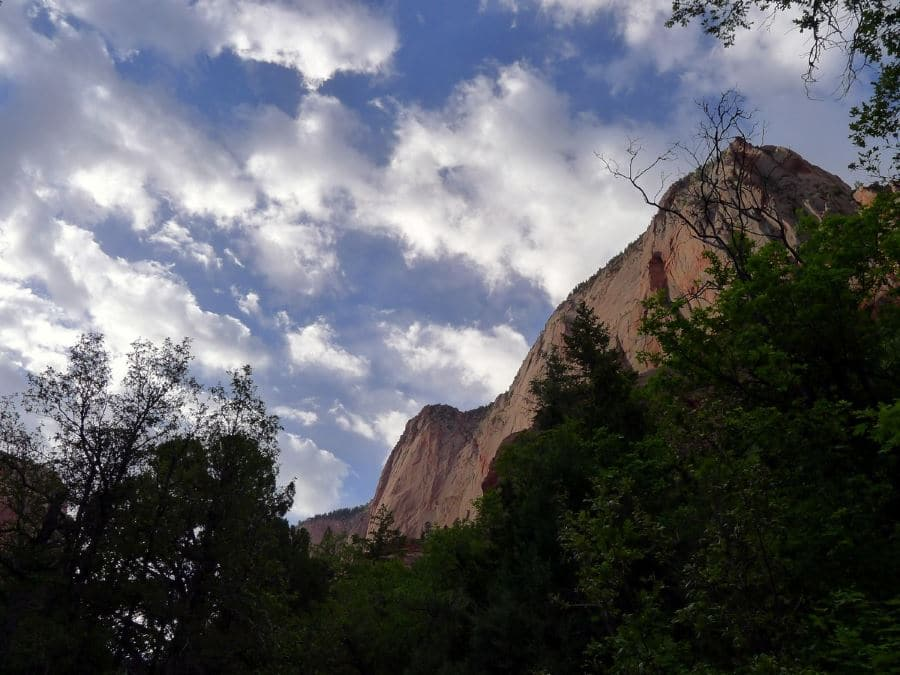 Taylor Creek Trail is a must-visit place in Zion National Park