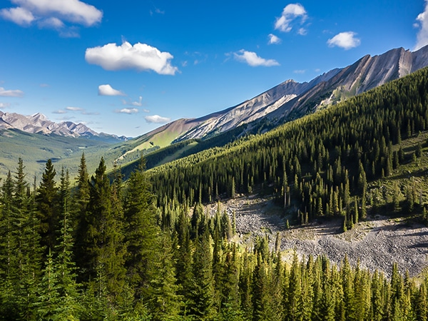 Scenery from Cascade Mountain scramble in Banff National Park