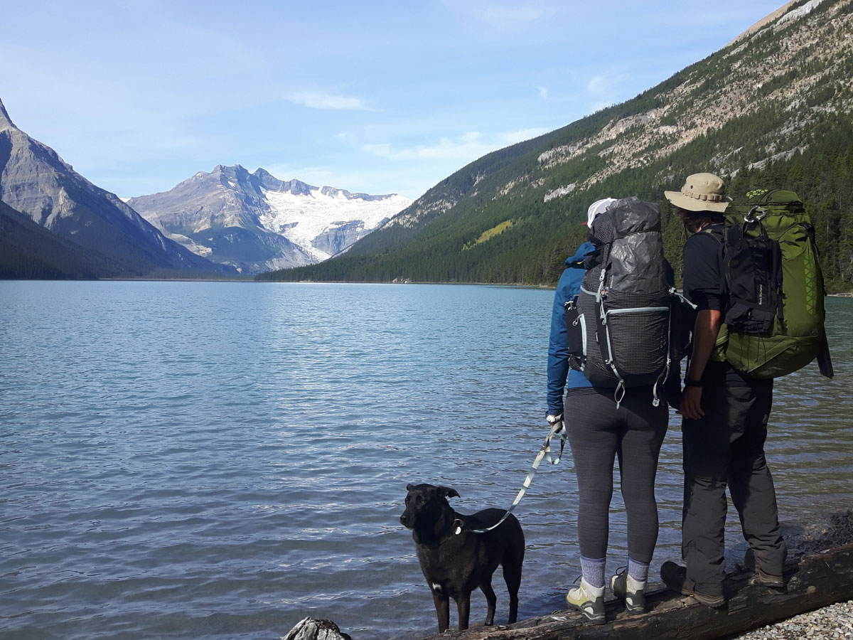 Two hikers and a dog on Glacier Lake Backpacking trail in Banff National Park