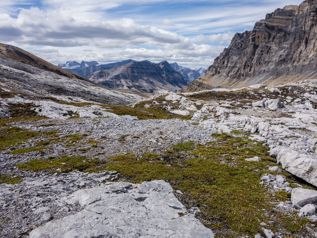 Views west from Little Hector scramble in Banff National Park