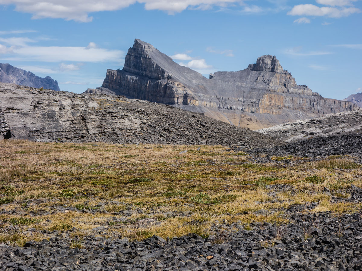 Molar Mountain view from Little Hector scramble in Banff National Park