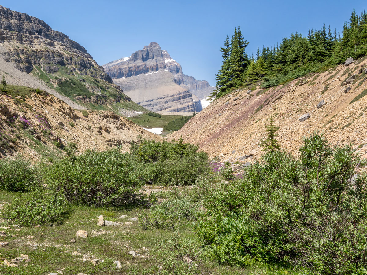 Trail to Iceberg Lake on the Onion scramble in Banff National Park