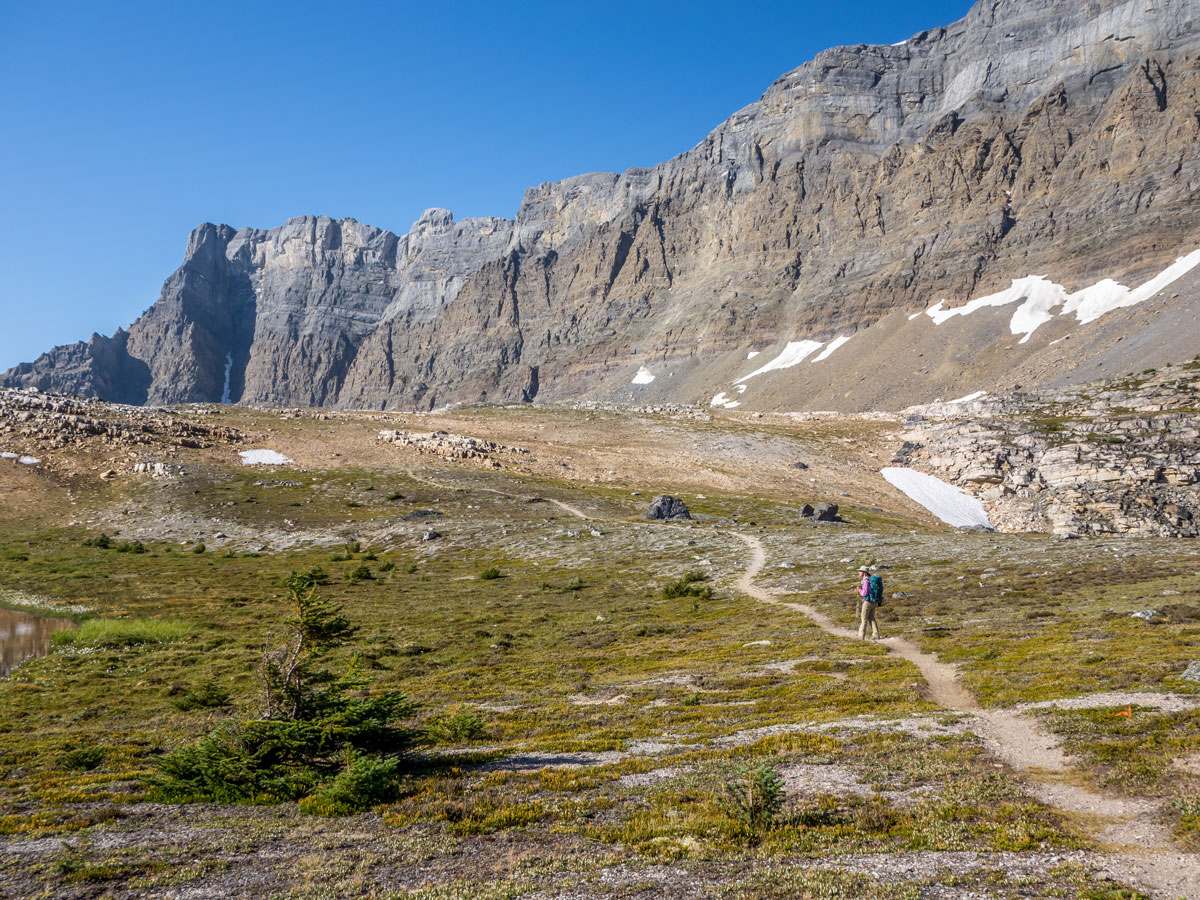 Approaching the highpoint of Crowfoot Pass on Bow Peak scramble in Banff National Park