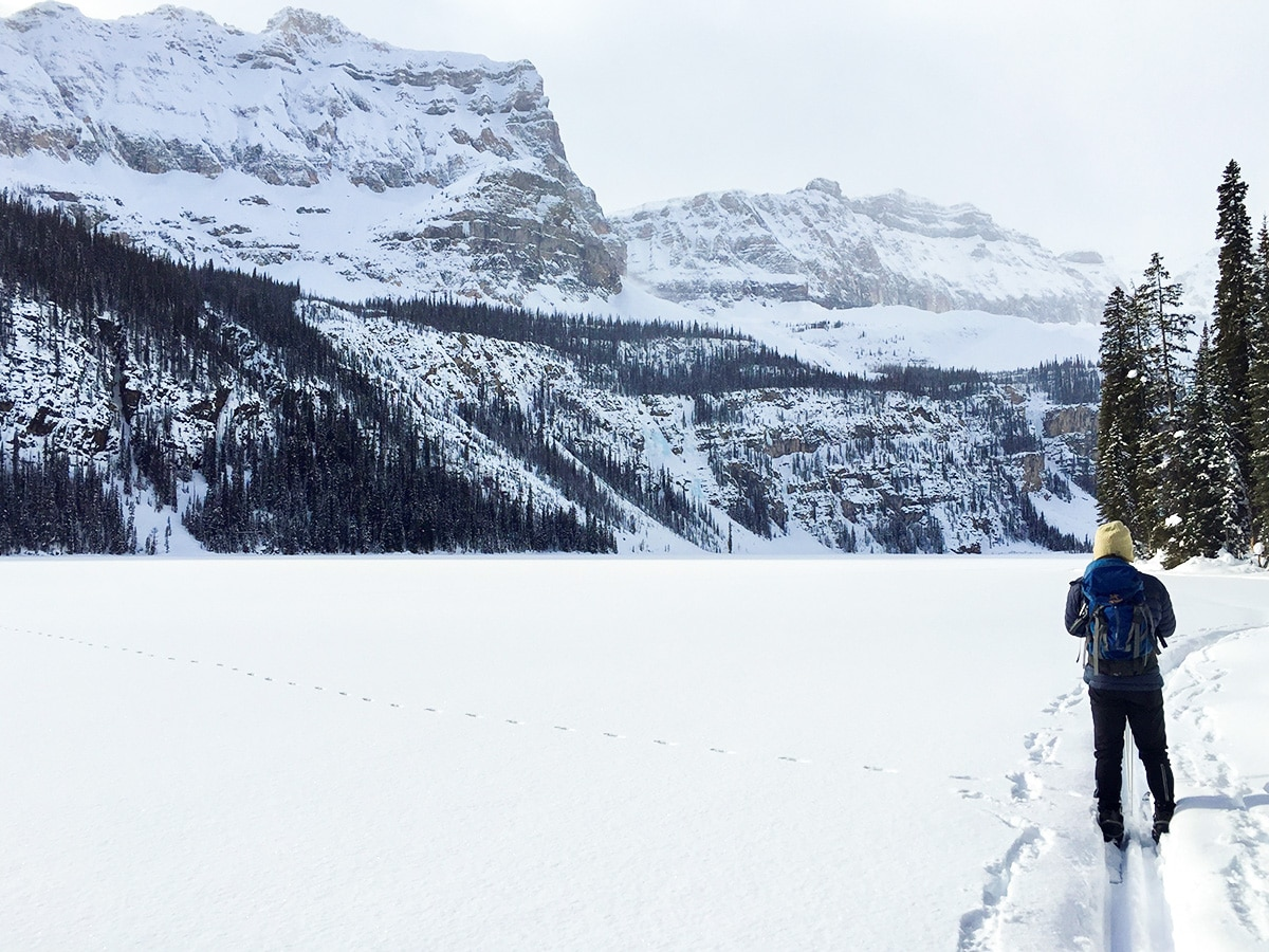 Ski on Boom Lake snowshoe trail in Banff National Park