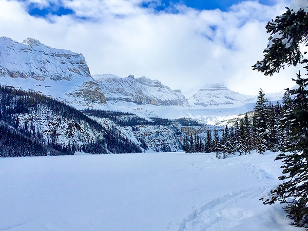 Scenery from Boom Lake snowshoe trail in Banff National Park