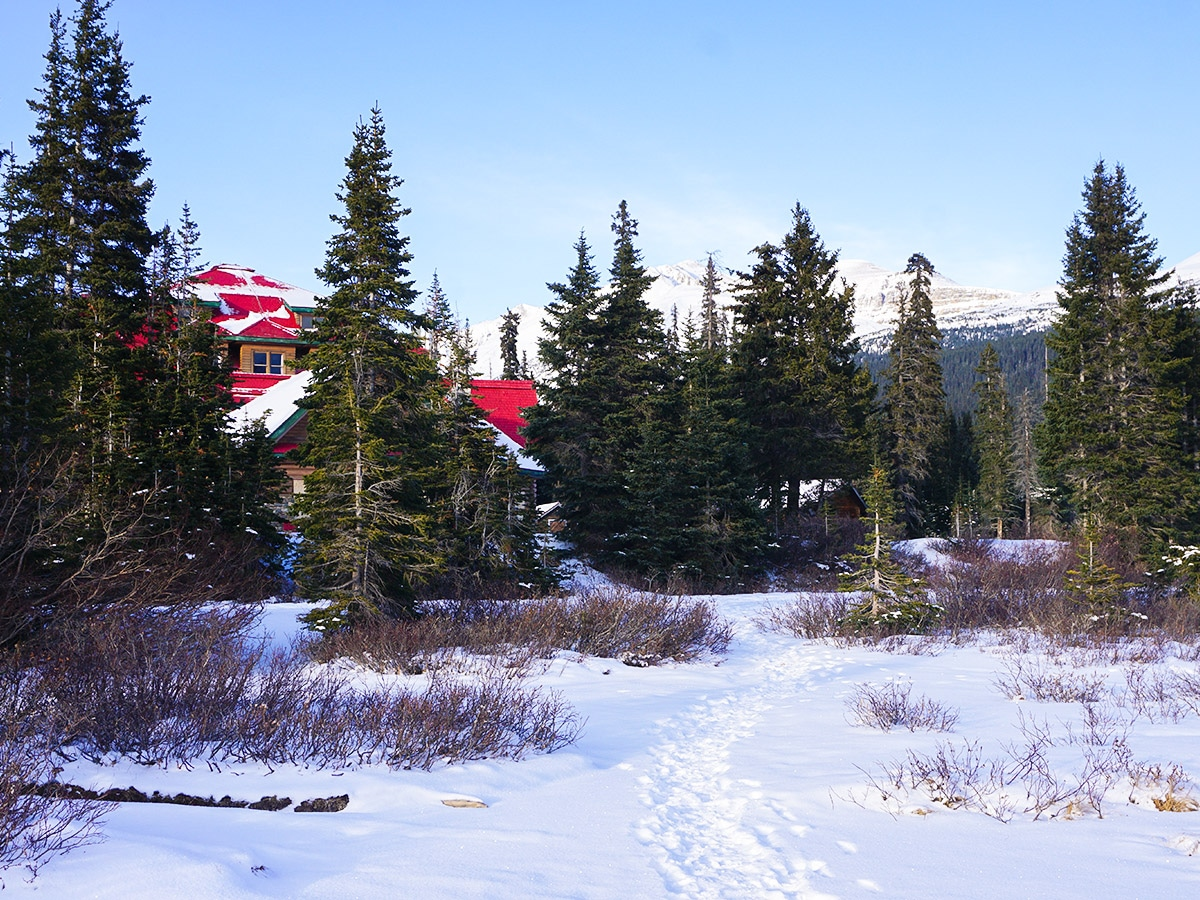 Num-Ti-Jah Lodge on Bow Lake snowshoe trail in Banff National Park