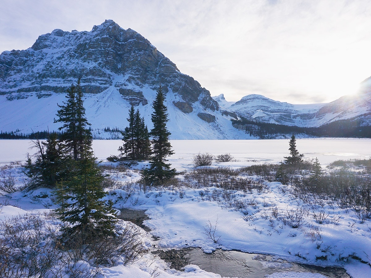 Views near the parking lot on Bow Lake snowshoe trail in Banff National Park