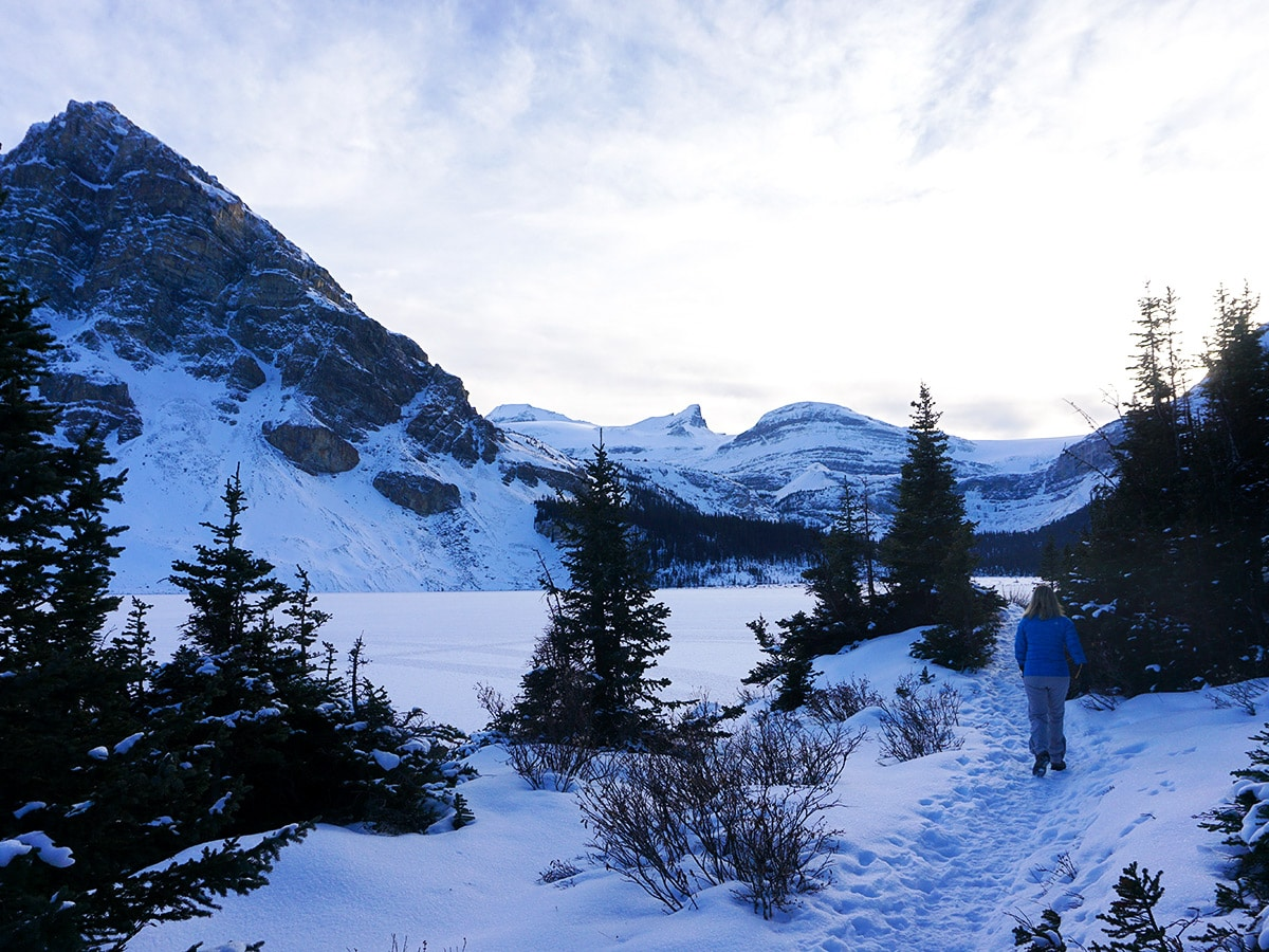 Path of Bow Lake snowshoe trail in Banff National Park
