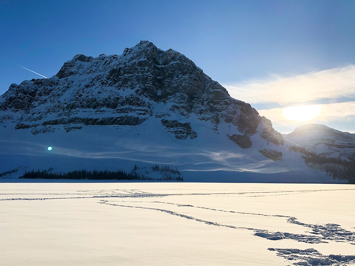 Crowfoot Mountain on Bow Lake snowshoe trail in Banff National Park