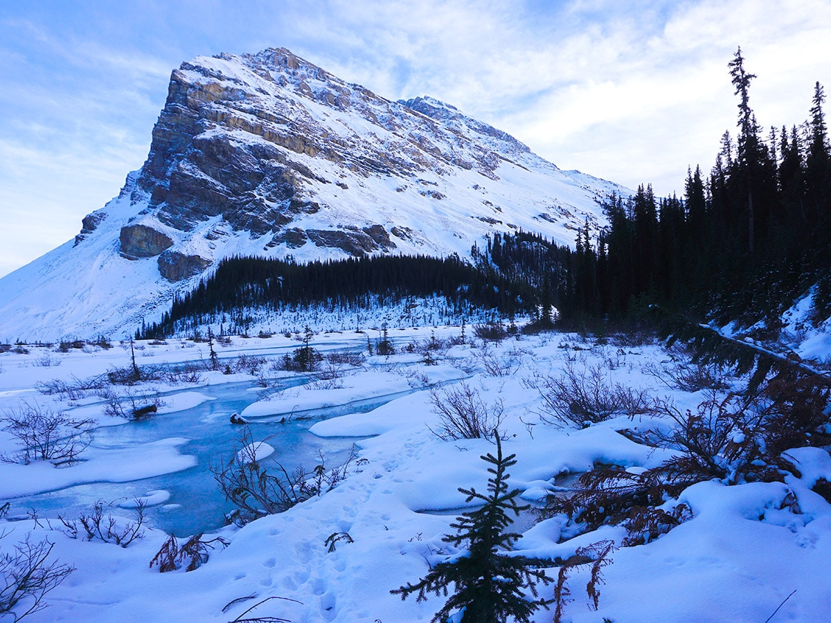 Stunning views on Bow Lake snowshoe trail in Banff National Park