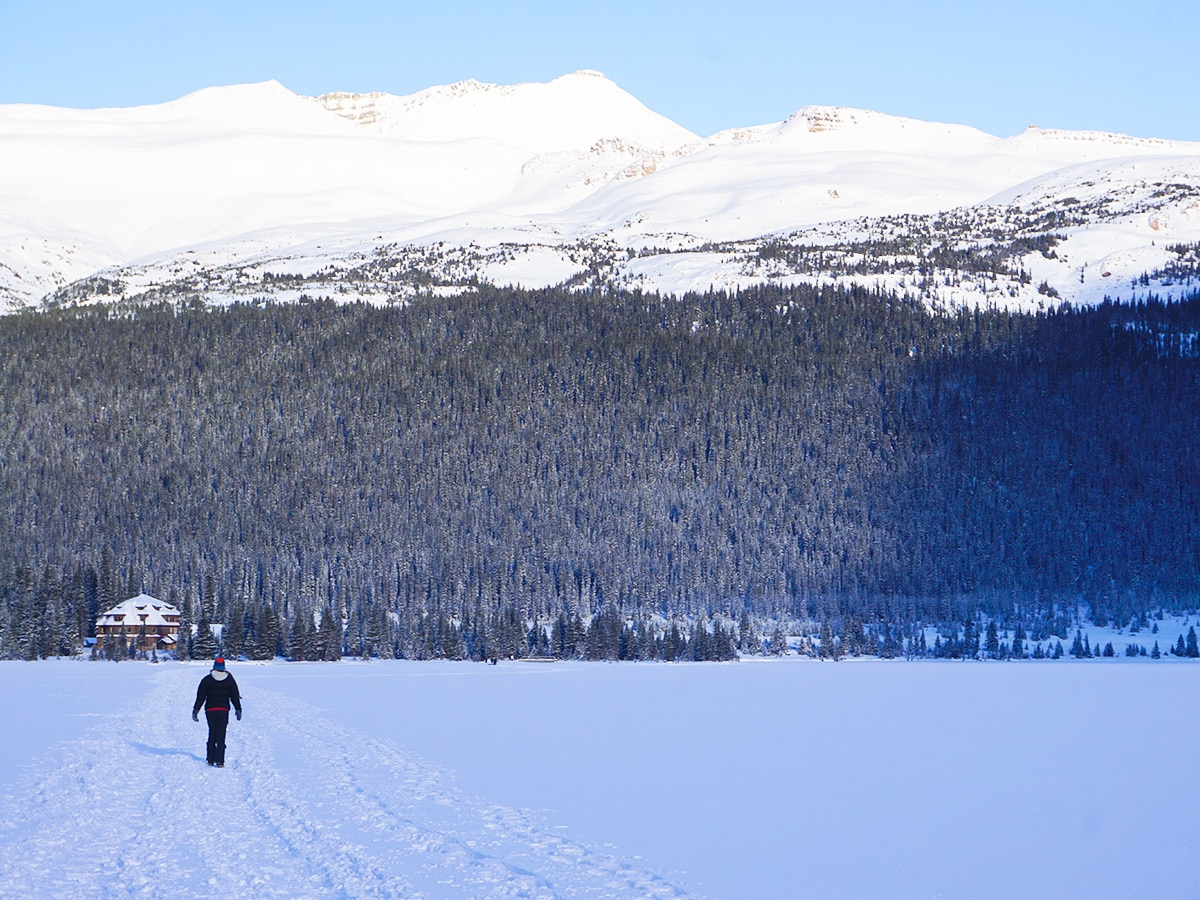 Walking on the lake on Bow Lake snowshoe trail in Banff National Park