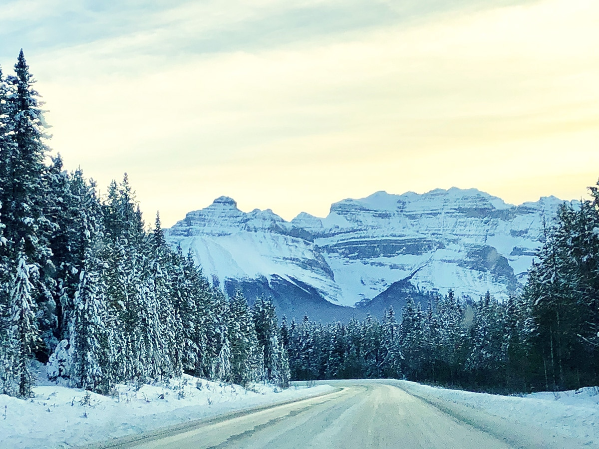 Views on a way to Bow Lake snowshoe trail in Banff National Park