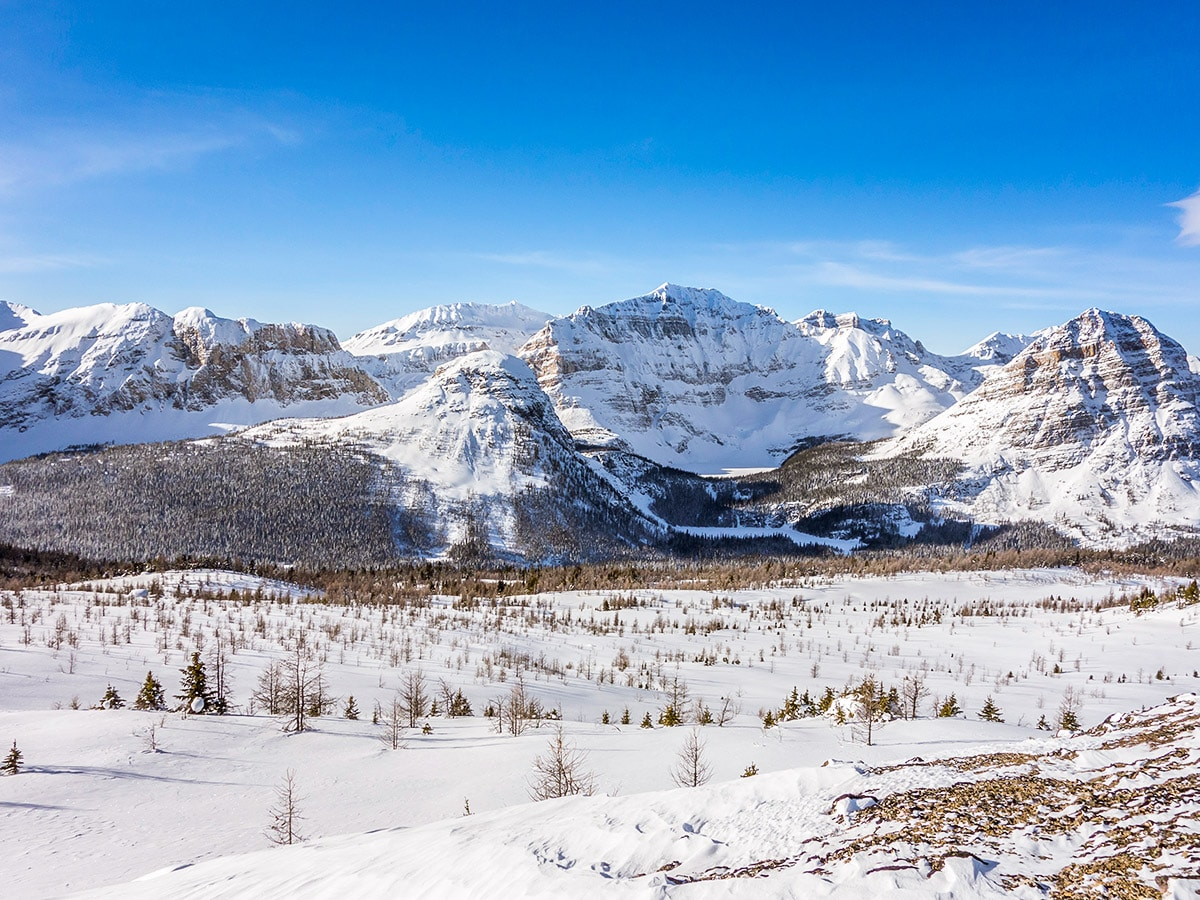 Stunning scenery from the Healy Pass snowshoe trail Banff National Park