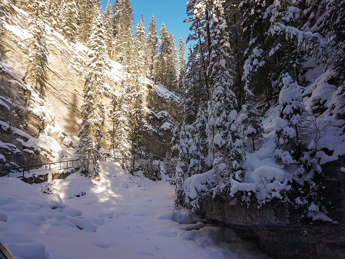 Path of Johnston Canyon snowshoe trail in Banff National Park