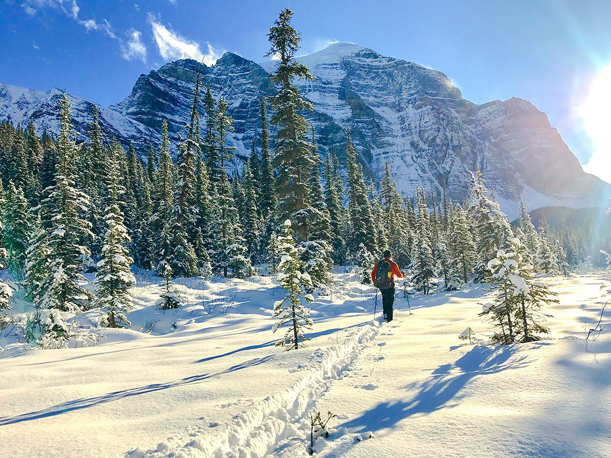 Views from Paradise Valley snowshoe trail near Lake Louise in Banff National Park