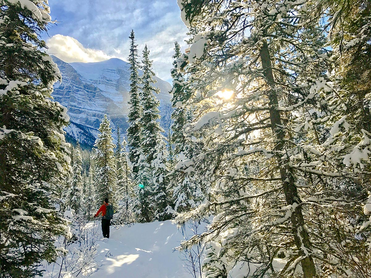 Snowshoeing into Paradise Valley near Lake Louise