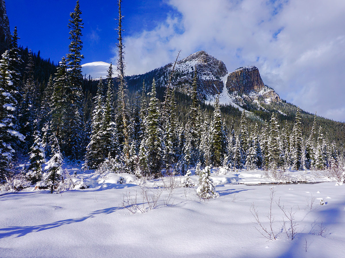 Saddle Mountain view from Paradise Valley snowshoe trail near Lake Louise in Banff National Park
