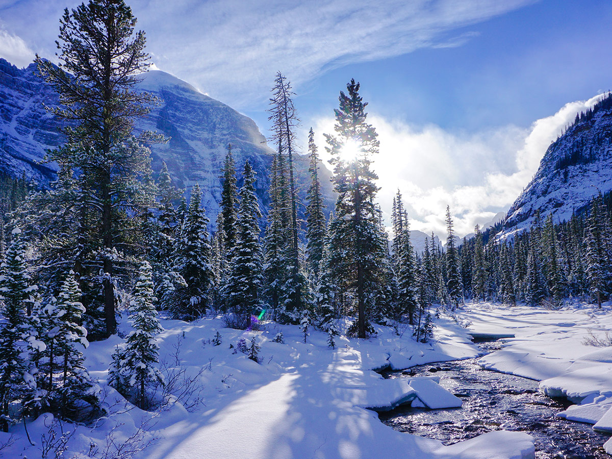 Paradise Creek on Paradise Valley snowshoe trail near Lake Louise in Banff National Park