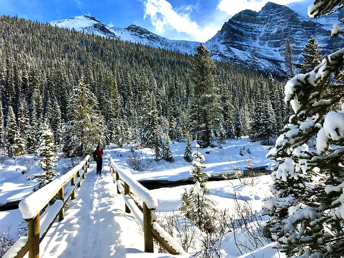 Stunning winter views on Paradise Valley snowshoe trail near Lake Louise in Banff National Park