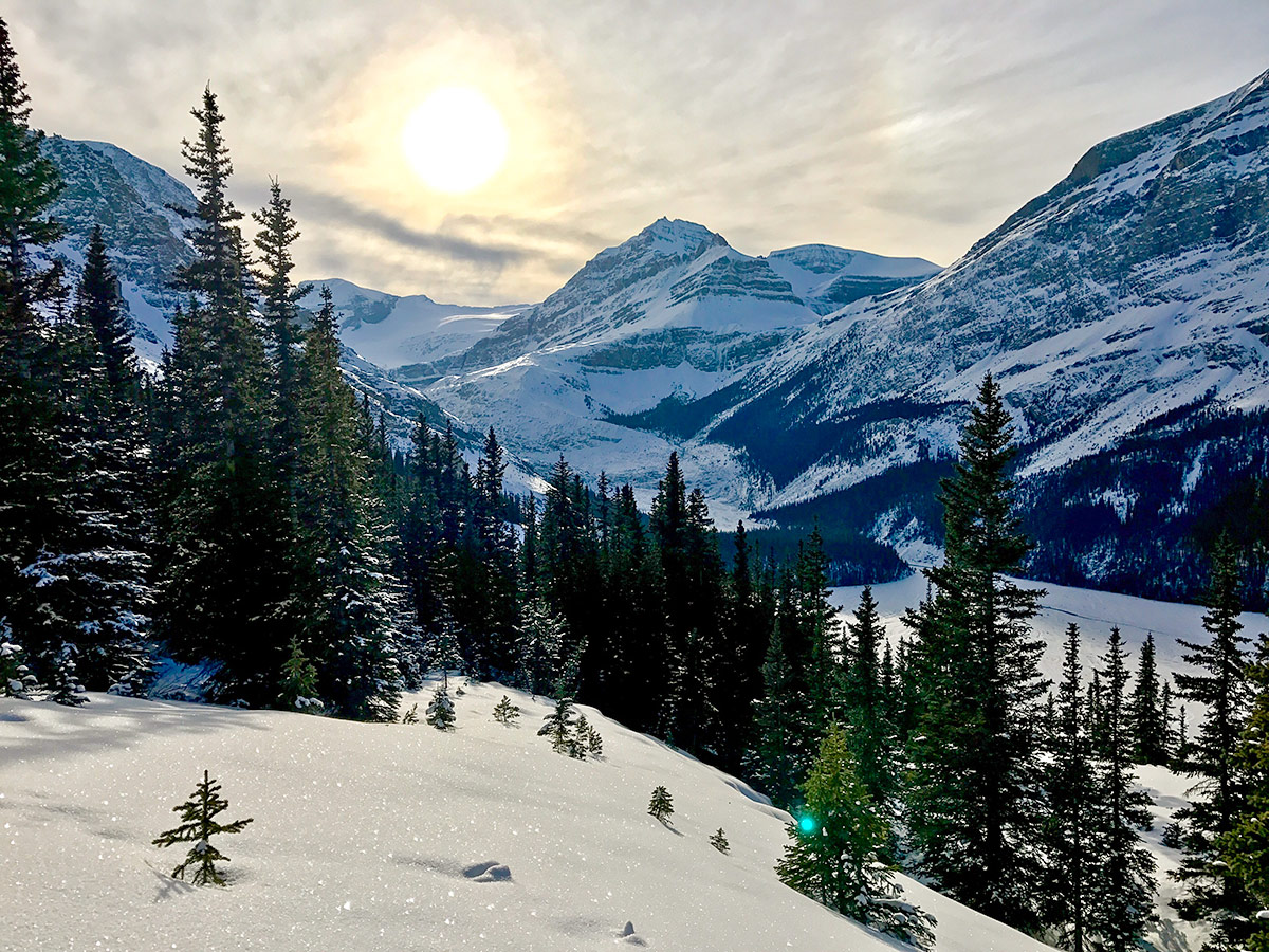 The slopes on Peyto Lake Viewpoint snowshoe trail in Banff National Park