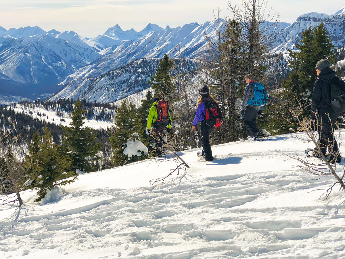 Going down from Standish Viewpoint on Sunshine Meadows snowshoe trail Banff National Park
