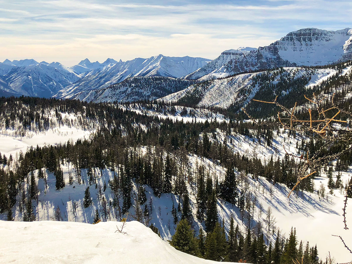 Panorama from the Sunshine Meadows snowshoe trail Banff National Park