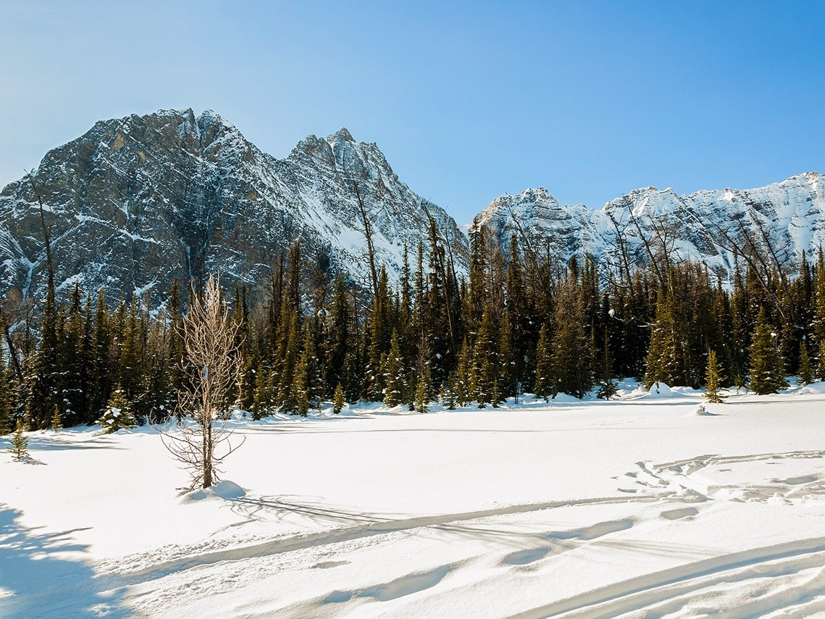 Winter on Taylor Lake and Panorama Meadows snowshoe trail in Banff National Park