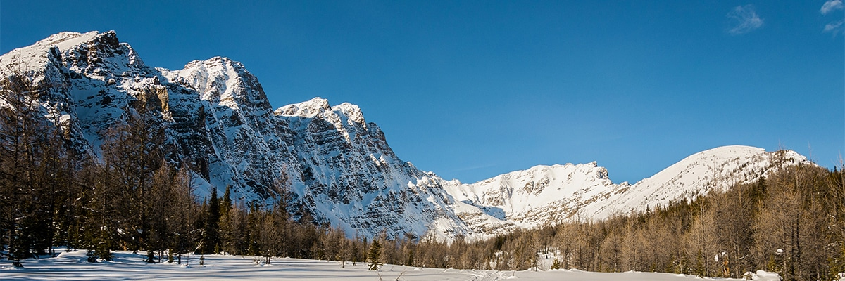 Incredible views on Taylor Lake and Panorama Meadows snowshoe trail in Banff National Park