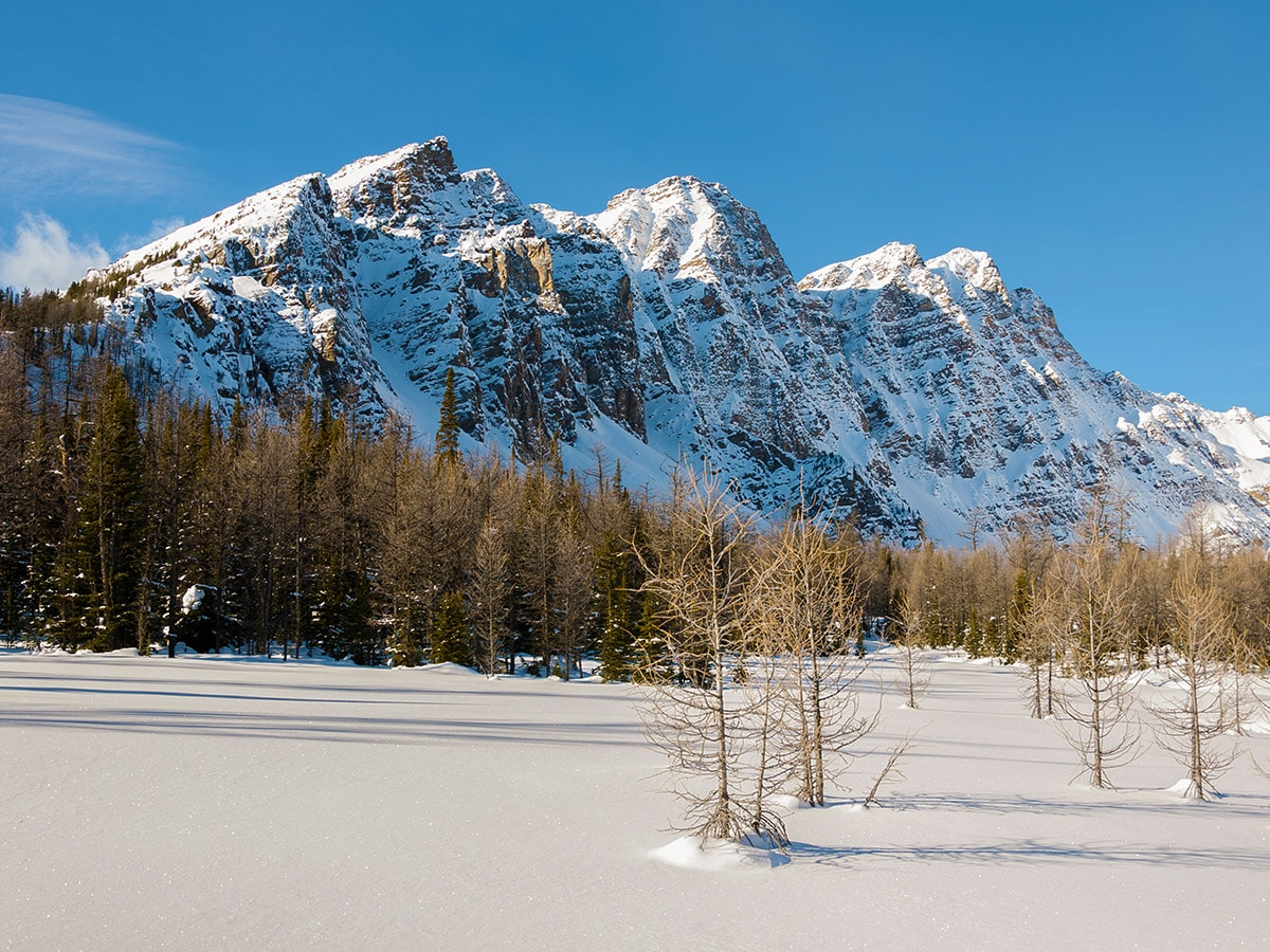 Winter views on Taylor Lake and Panorama Meadows snowshoe trail in Banff National Park