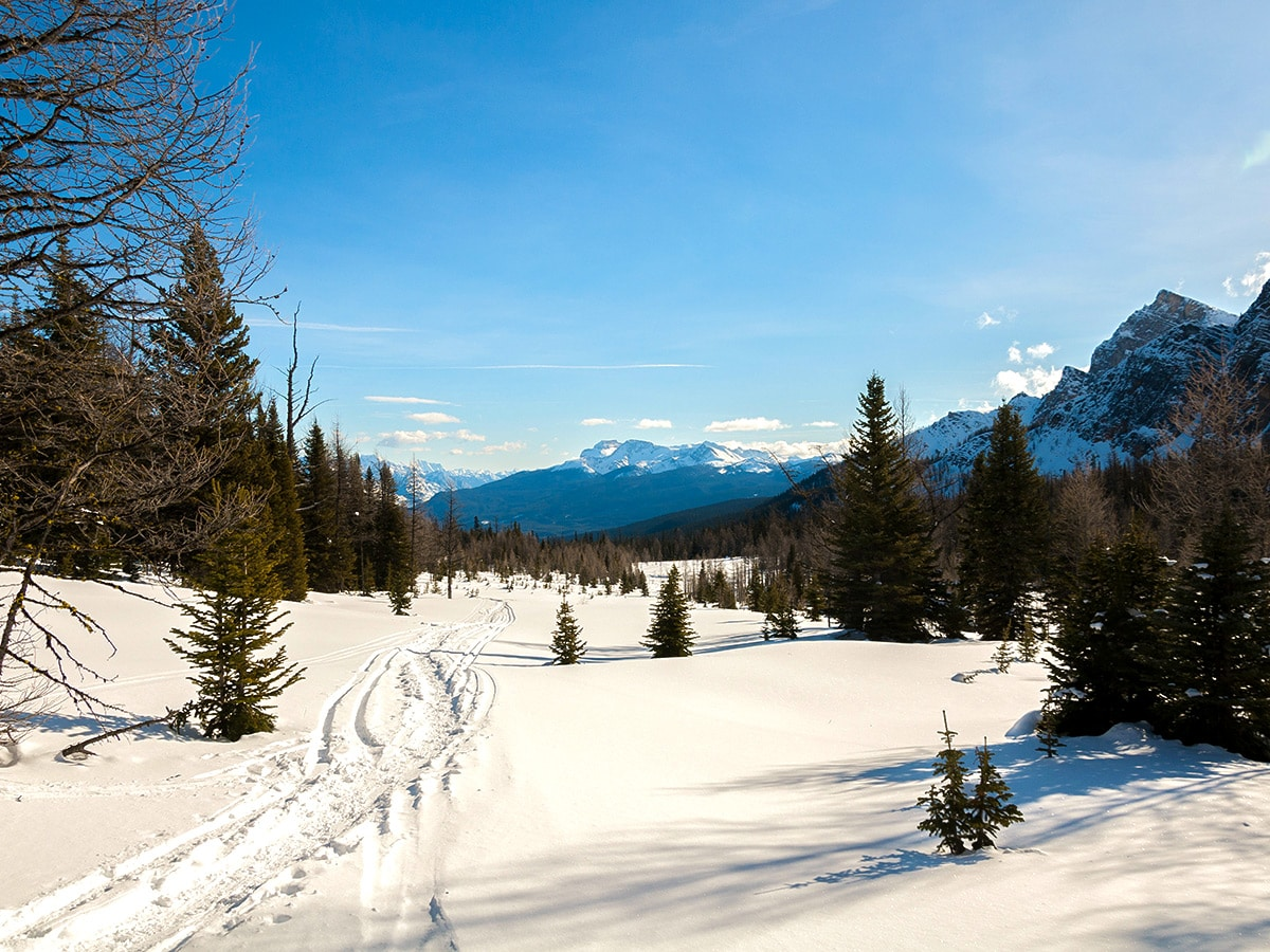 Route on Taylor Lake and Panorama Meadows snowshoe trail in Banff National Park
