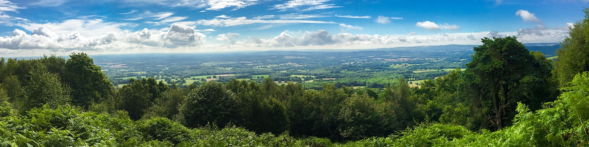 Best hikes in South Downs, England