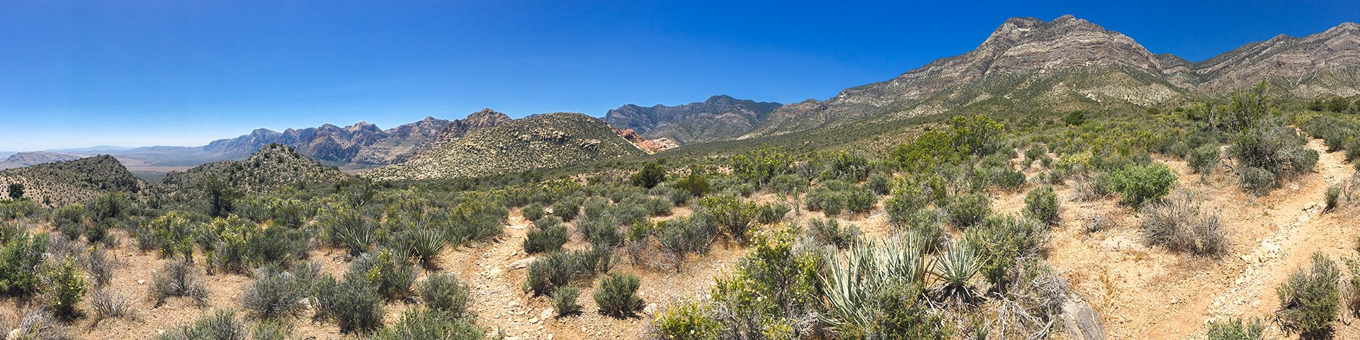 Best day hikes near Las Vegas